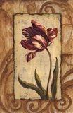 Classic Tulip II Art Print