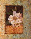 Antique Rose II - Special Art Print