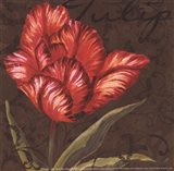 Tulipa I - Mini Art Print