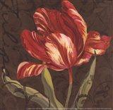 Tulipa II - Mini Art Print