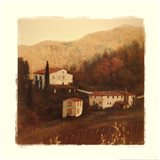 Villa II Art Print