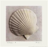 Sea Shapes II Art Print