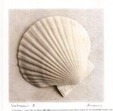 Sea Shapes II - Special Art Print