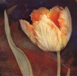 Dusk Tulip II Art Print