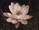 Garden Journal IV Art Print