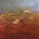 Pond Lilies I Art Print