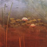 Pond Lilies II Art Print