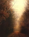 Road Of Mysteries I Art Print
