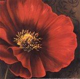 Rouge Poppies I -petite Art Print