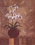 Orchid Obsession I Art Print