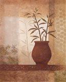 Bamboo Shadow II Art Print