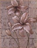 Lilies on Silver II Art Print