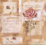 Rose Concerto II Art Print