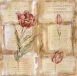 Rose Concerto IV Art Print