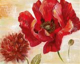 Passion for Poppies II Art Print
