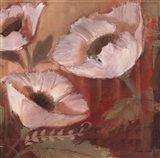 Amapola Blanca II Art Print