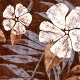Flowers on Chocolate II Art Print