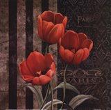 Paris Fleurs I Art Print
