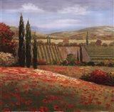 Tuscan Cypress I Art Print