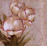 Perfect Blooms I Art Print