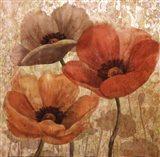 Poppy Allure II Art Print
