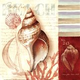 Pacific Beach Art Print