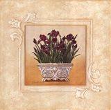 Red Irises Art Print