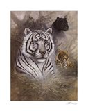 Serengeti Predator Art Print