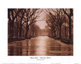 Rainy Day - Central Park Art Print