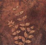 Evening Forest II Art Print