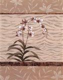 Orchid Exotic I Art Print
