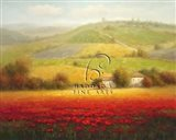 Fields of Red and Gold II Art Print