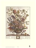 February/Twelve Months of Flowers, 1730 Art Print