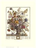November/Twelve Months of Flowers, 1730 Art Print