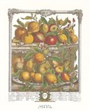April/Twelve Months of Fruits, 1732 Art Print