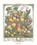July/Twelve Months of Fruits, 1732 Art Print