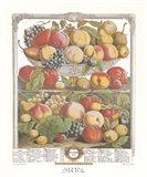 September/Twelve Months of Fruits, 1732 Art Print