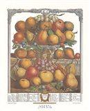 December/Twelve Months of Fruits, 1732 Art Print