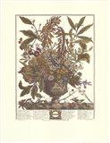 January/Twelve Months of Flowers, 1730 Art Print