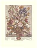 June/Twelve Months of Flowers, 1730 Art Print