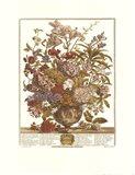 July/Twelve Months of Flowers, 1730 Art Print