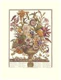 September/Twelve Months of Flowers, 1730 Art Print