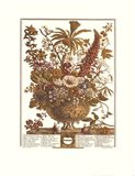 December/Twelve Months of Flowers, 1730 Art Print