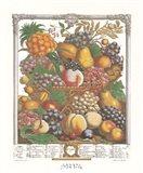 October/Twelve Months of Fruits, 1732 Art Print