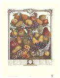 November/Twelve Months of Fruits, 1732 Art Print
