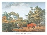 American Farm Scenes Art Print