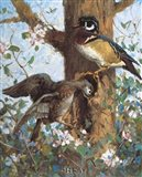 Spring (Wood Ducks) Art Print