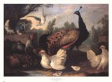 Barnyard with Chickens Art Print