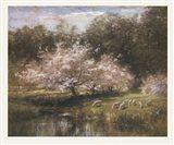 Sheep Grazing Under Apple Blossoms Art Print