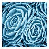 Nestled Succulents Art Print